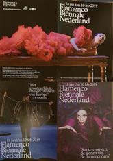 Flamenco biënnale.jpg